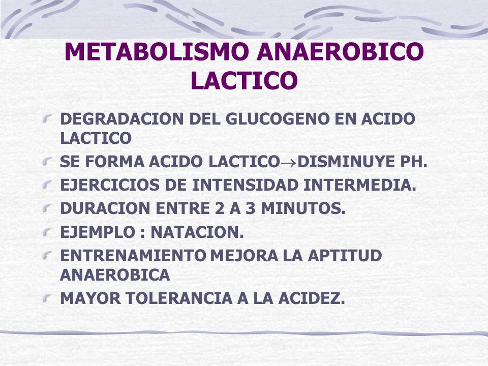 METABOLISMO ANAEROBICO LACTICO