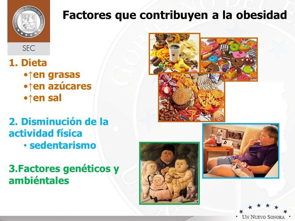 Factores que contribuyen a la obesidad