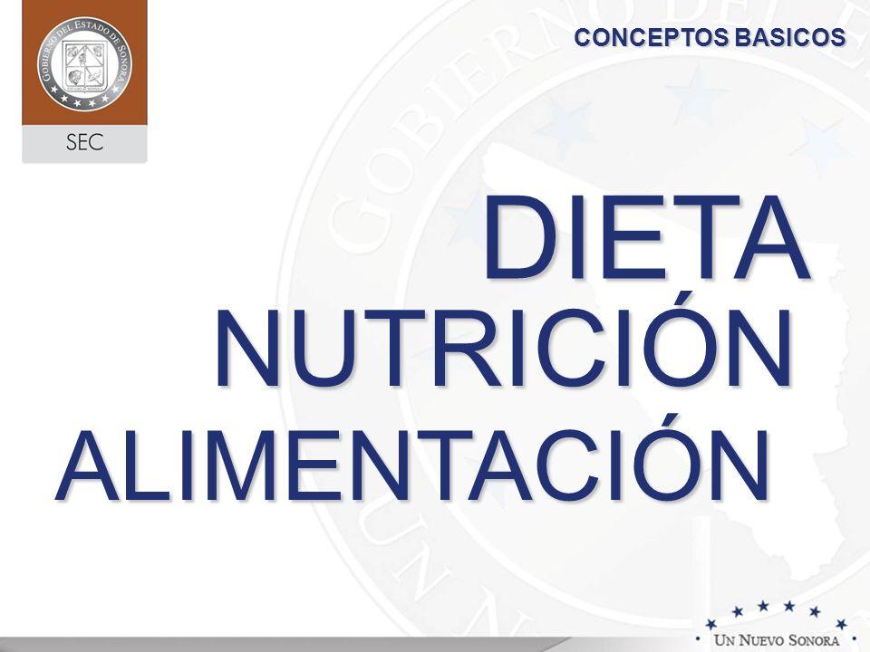 CONCEPTOS BASICOS DIETA NUTRICIÓN ALIMENTACIÓN