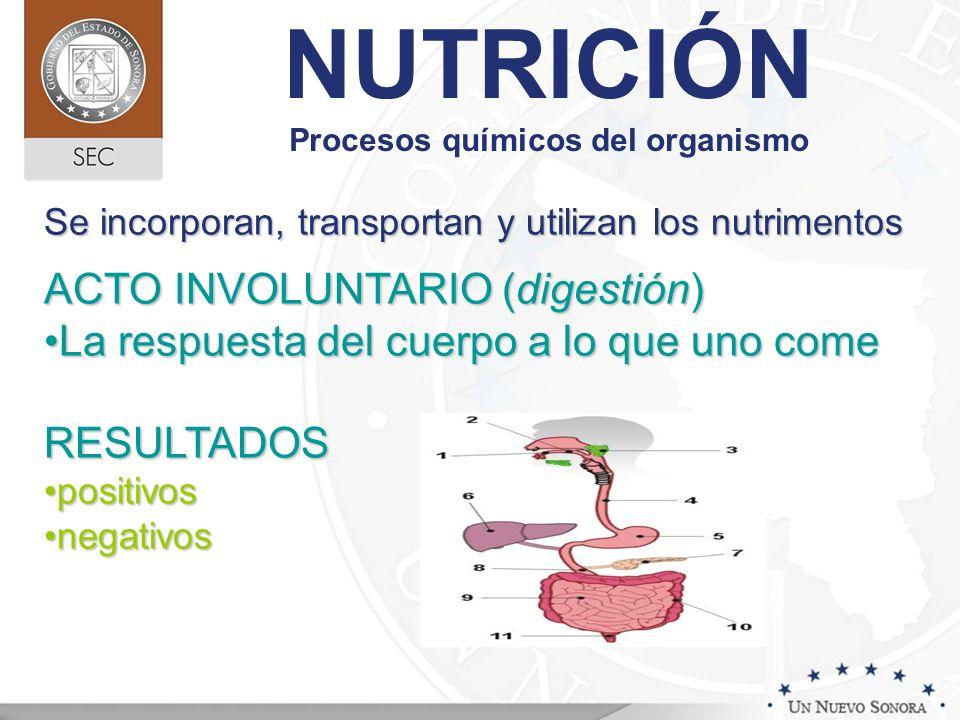 NUTRICIÓN Procesos químicos del organismo