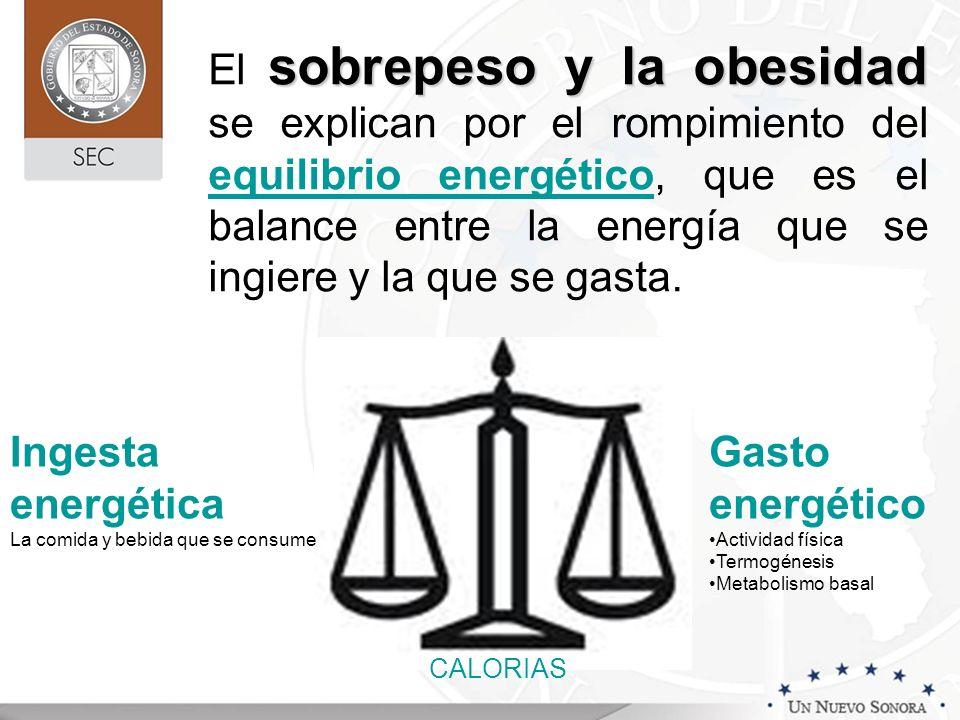 El sobrepeso y la obesidad se explican por el rompimiento del equilibrio energético, que es el balance entre la energía que se ingiere y la que se gasta.
