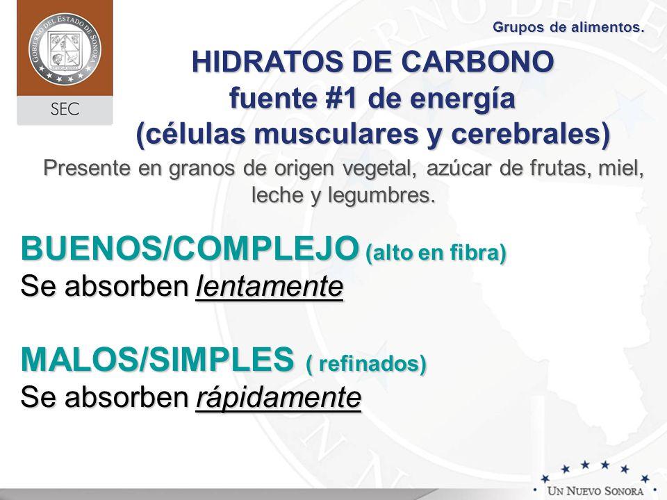BUENOS/COMPLEJO (alto en fibra)