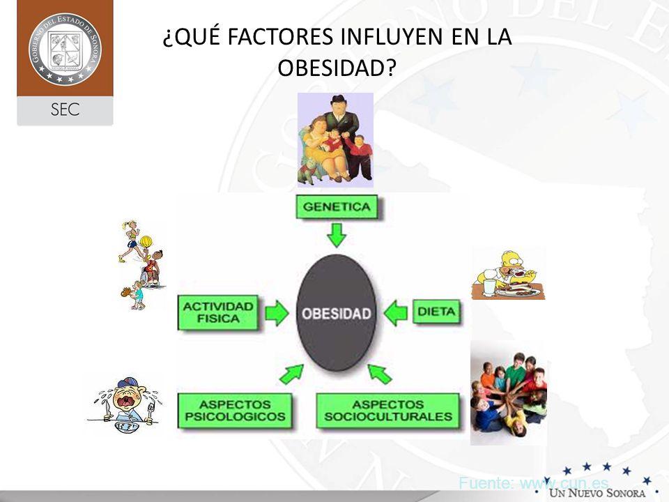 ¿QUÉ FACTORES INFLUYEN EN LA OBESIDAD