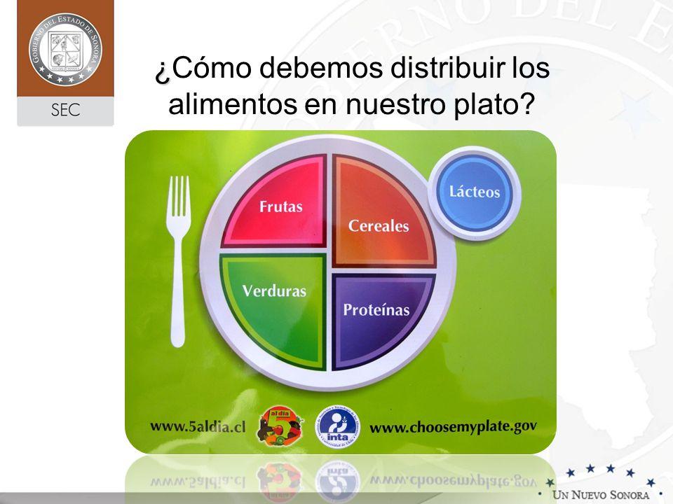 ¿Cómo debemos distribuir los alimentos en nuestro plato