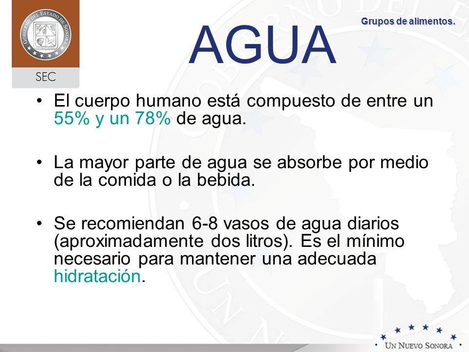 AGUA El cuerpo humano está compuesto de entre un 55% y un 78% de agua.