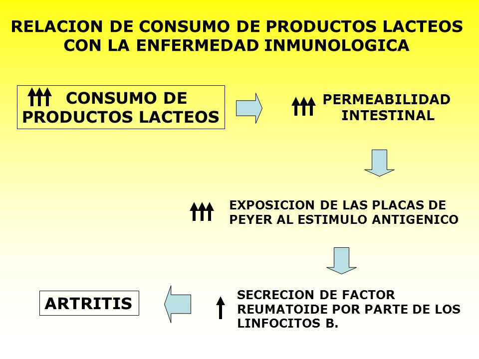 RELACION DE CONSUMO DE PRODUCTOS LACTEOS
