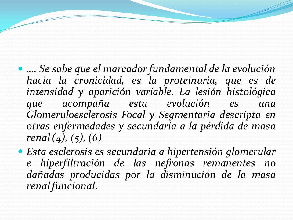 …. Se sabe que el marcador fundamental de la evolución hacia la cronicidad, es la proteinuria, que es de intensidad y aparición variable. La lesión histológica que acompaña esta evolución es una Glomeruloesclerosis Focal y Segmentaria descripta en otras enfermedades y secundaria a la pérdida de masa renal (4), (5), (6)