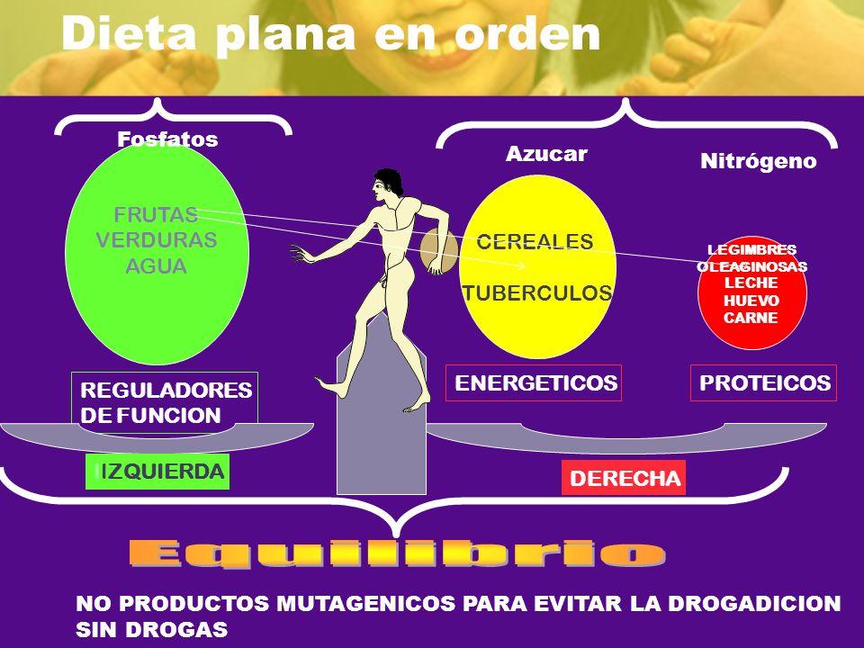 Dieta plana en orden Equilibrio Fosfatos FRUTAS VERDURAS AGUA Azucar
