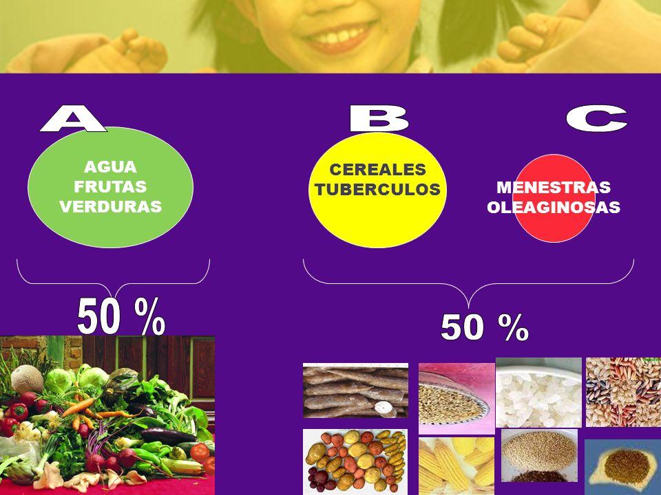 A B C 50 % 50 % AGUA CEREALES FRUTAS TUBERCULOS VERDURAS MENESTRAS