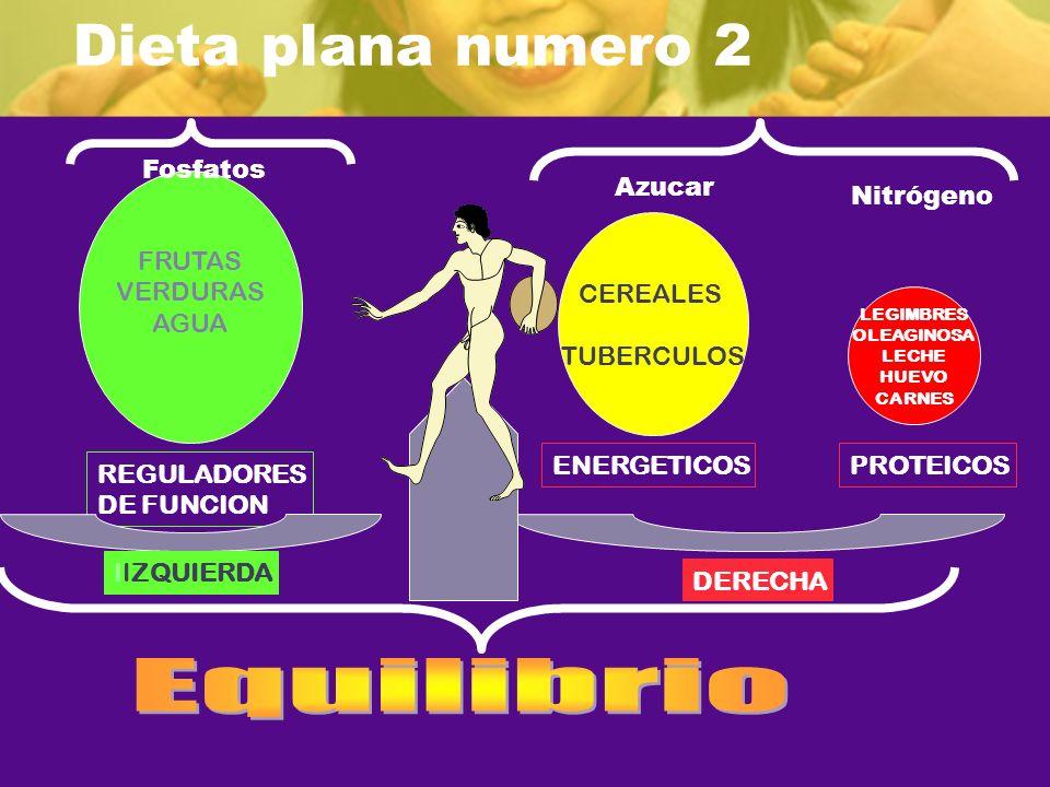 Dieta plana numero 2 Equilibrio Fosfatos FRUTAS VERDURAS AGUA Azucar