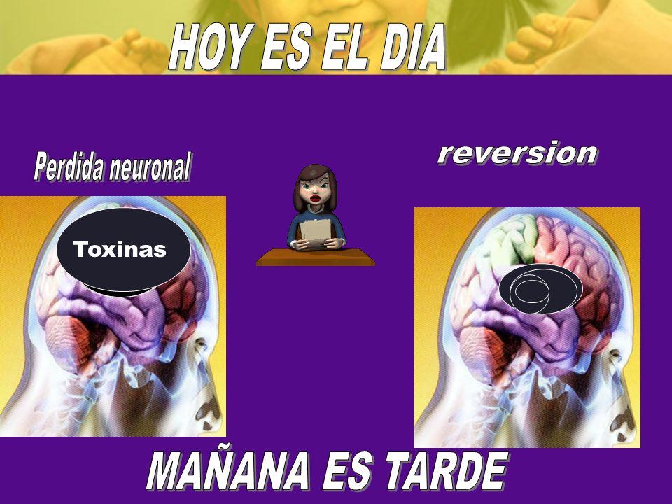HOY ES EL DIA reversion Perdida neuronal MAÑANA ES TARDE Toxinas