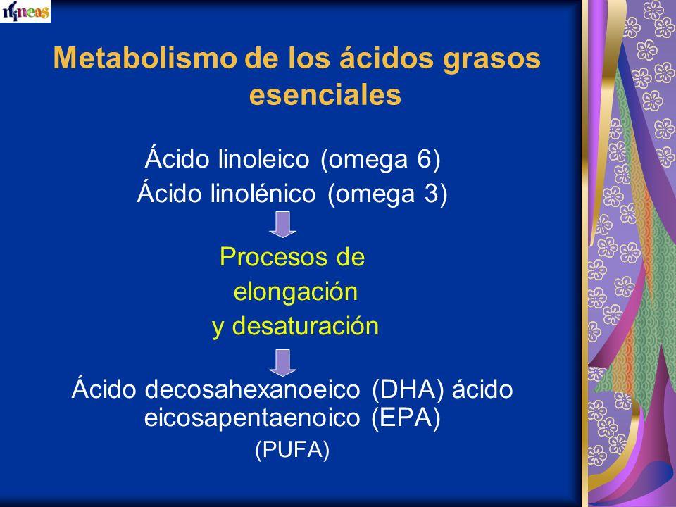 Metabolismo de los ácidos grasos esenciales