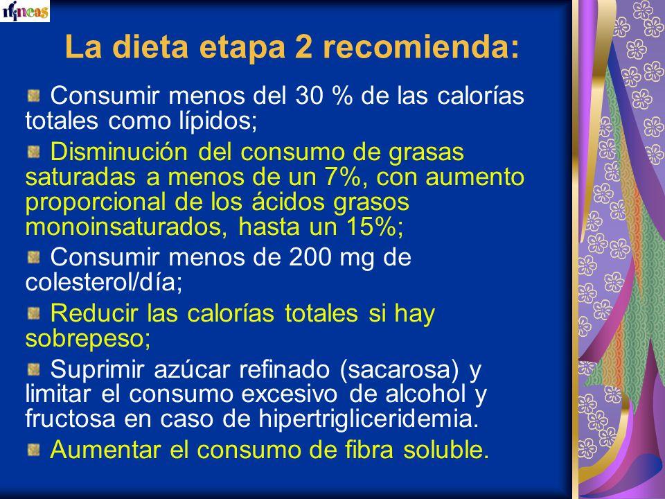 La dieta etapa 2 recomienda: