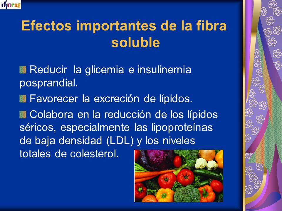 Efectos importantes de la fibra soluble