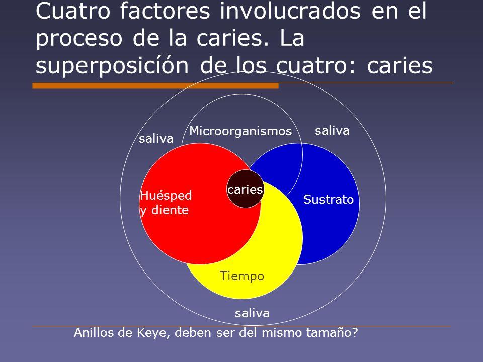 Cuatro factores involucrados en el proceso de la caries