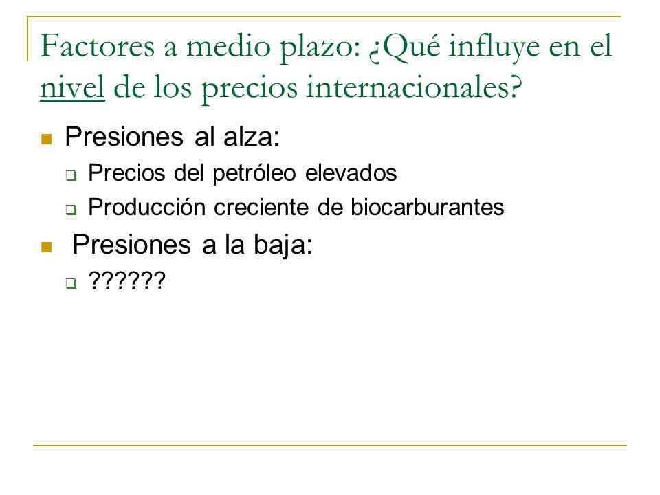 Factores a medio plazo: ¿Qué influye en el nivel de los precios internacionales