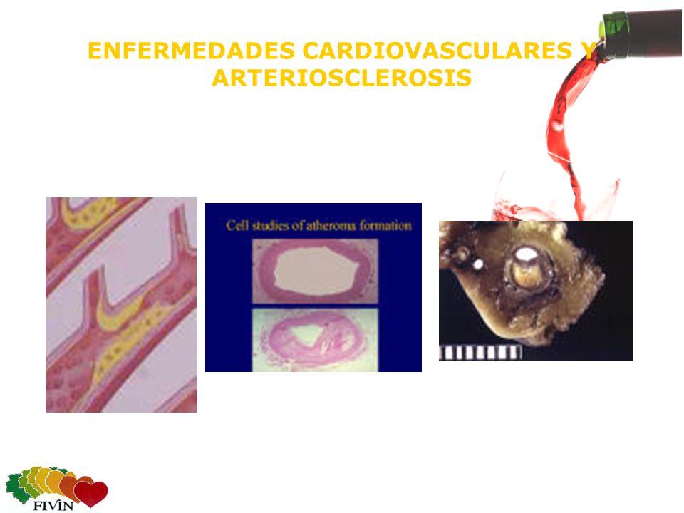 ENFERMEDADES CARDIOVASCULARES Y ARTERIOSCLEROSIS