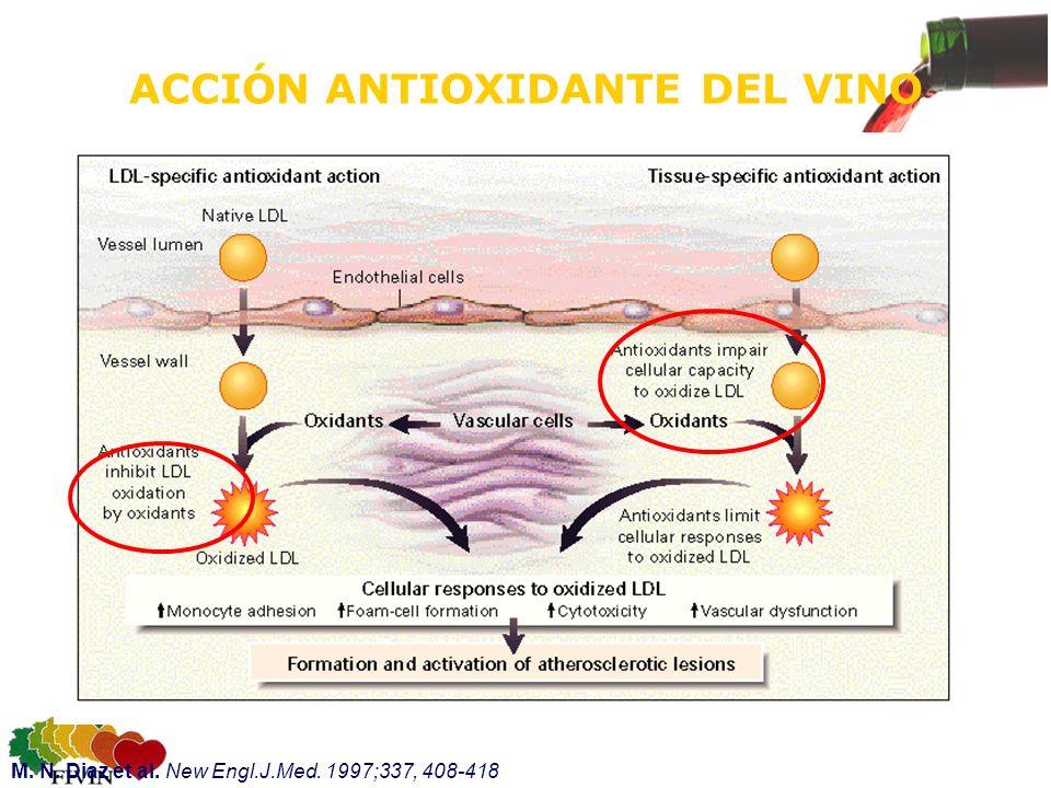 ACCIÓN ANTIOXIDANTE DEL VINO