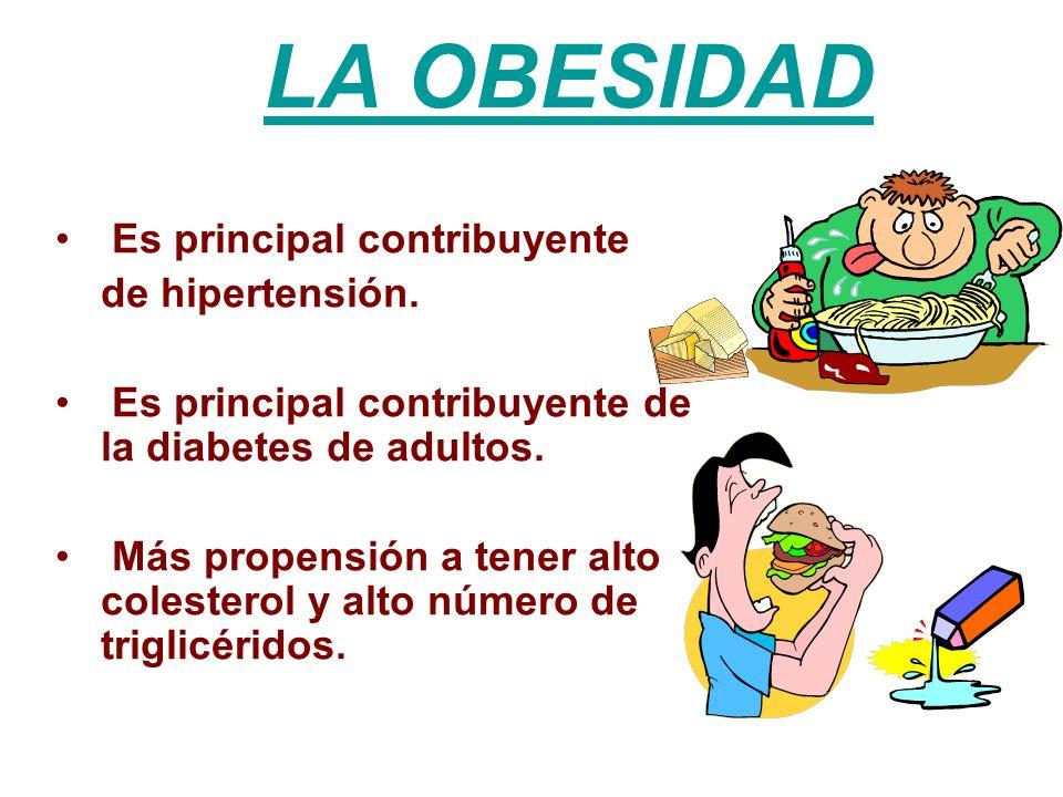 LA OBESIDAD Es principal contribuyente de hipertensión.