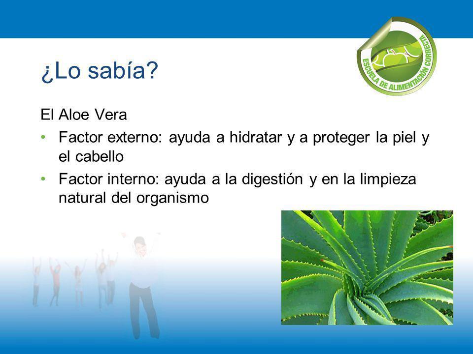 ¿Lo sabía El Aloe Vera. Factor externo: ayuda a hidratar y a proteger la piel y el cabello.
