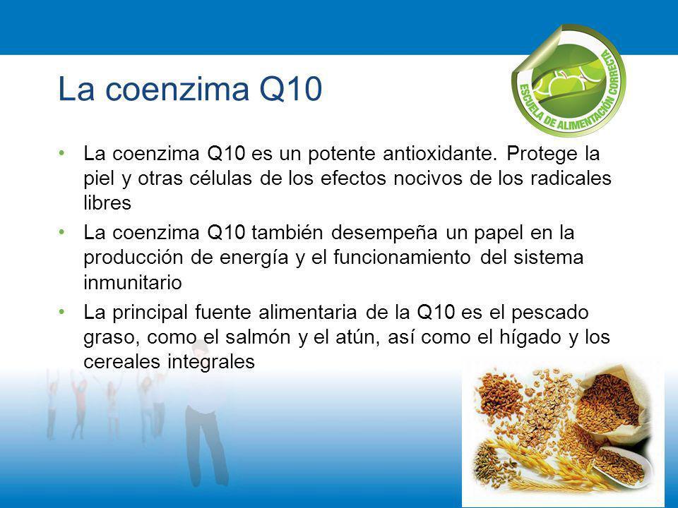 La coenzima Q10 La coenzima Q10 es un potente antioxidante. Protege la piel y otras células de los efectos nocivos de los radicales libres.