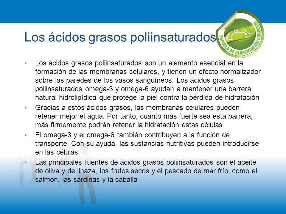 Los ácidos grasos poliinsaturados