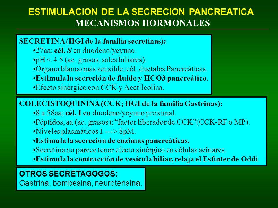 ESTIMULACION DE LA SECRECION PANCREATICA MECANISMOS HORMONALES