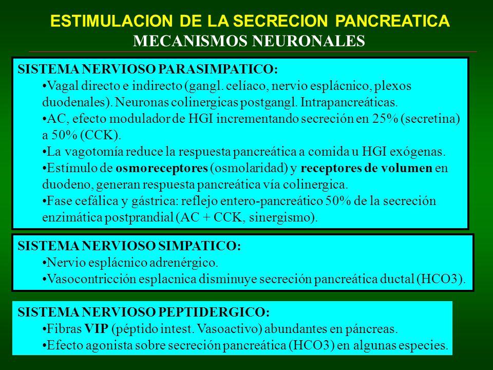 ESTIMULACION DE LA SECRECION PANCREATICA MECANISMOS NEURONALES