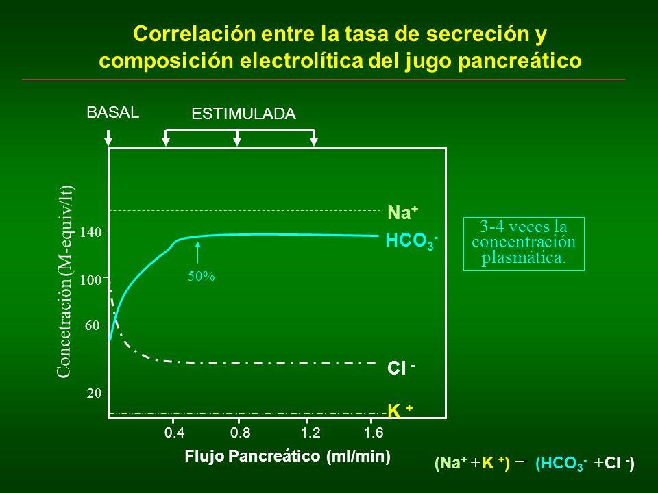 3-4 veces la concentración plasmática.