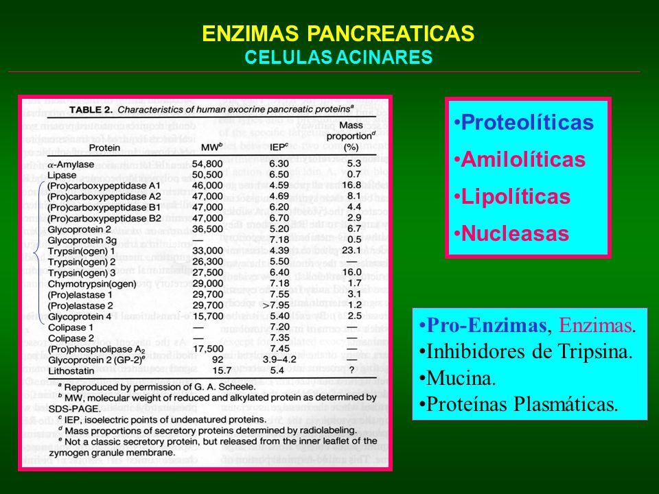 Inhibidores de Tripsina. Mucina. Proteínas Plasmáticas.