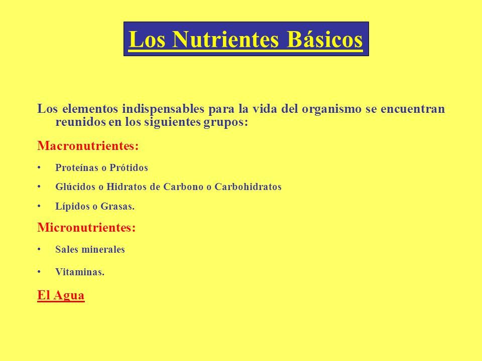 Los Nutrientes Básicos