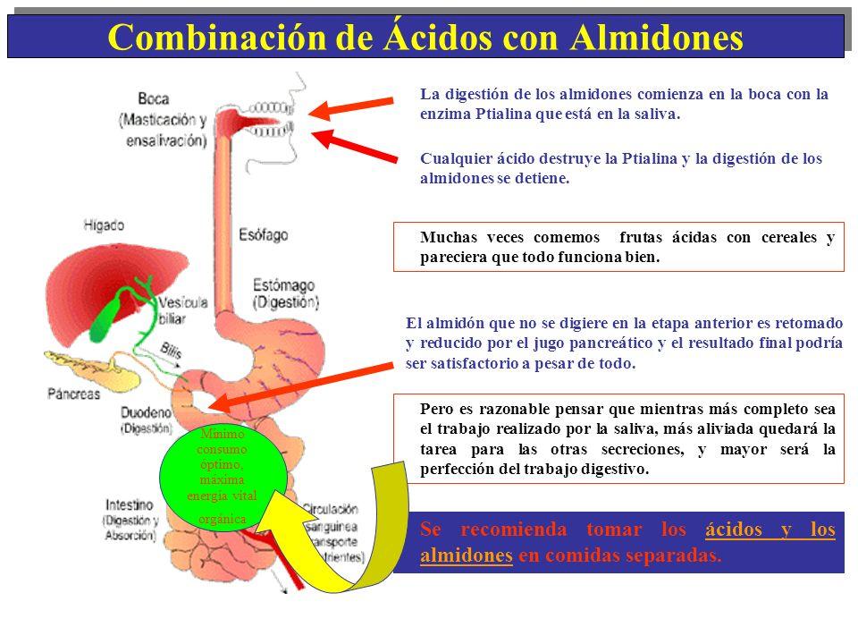 Combinación de Ácidos con Almidones
