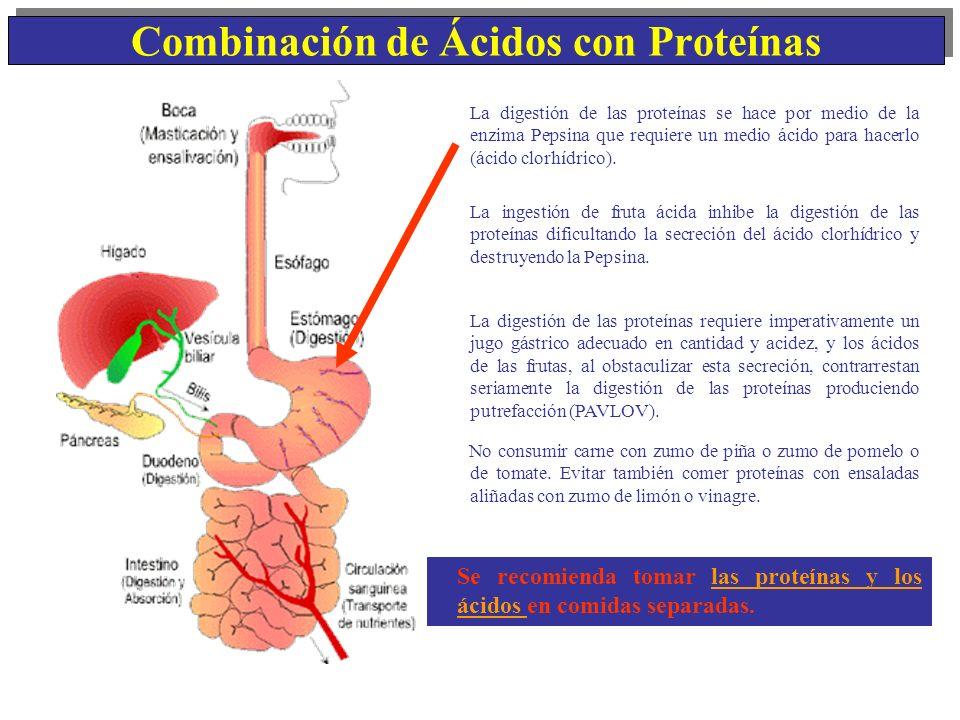 Combinación de Ácidos con Proteínas