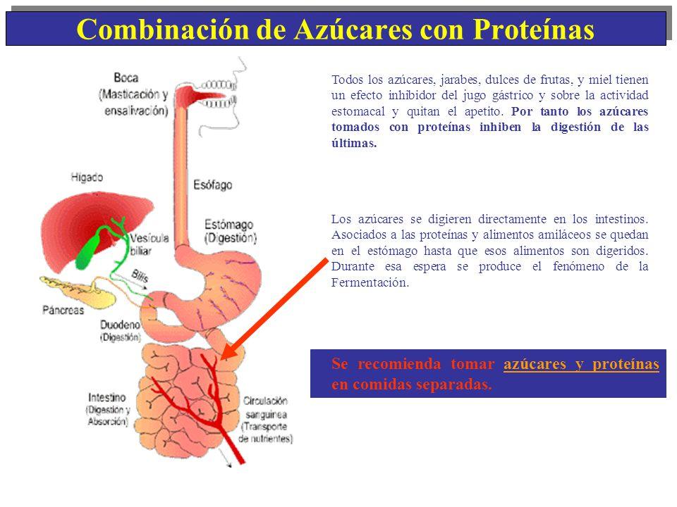 Combinación de Azúcares con Proteínas