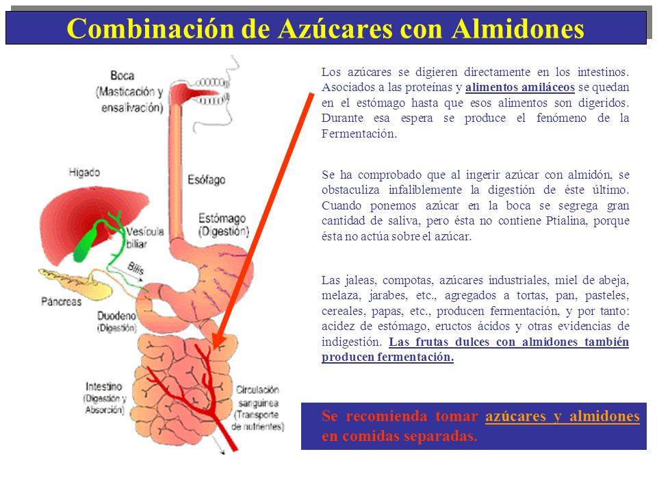Combinación de Azúcares con Almidones