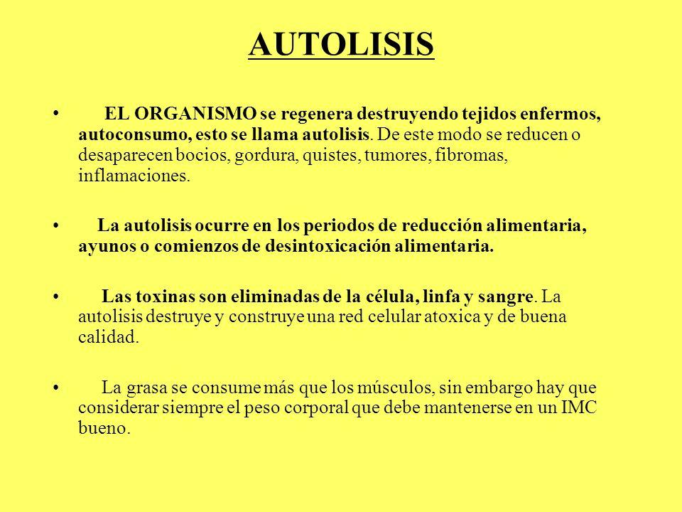 AUTOLISIS