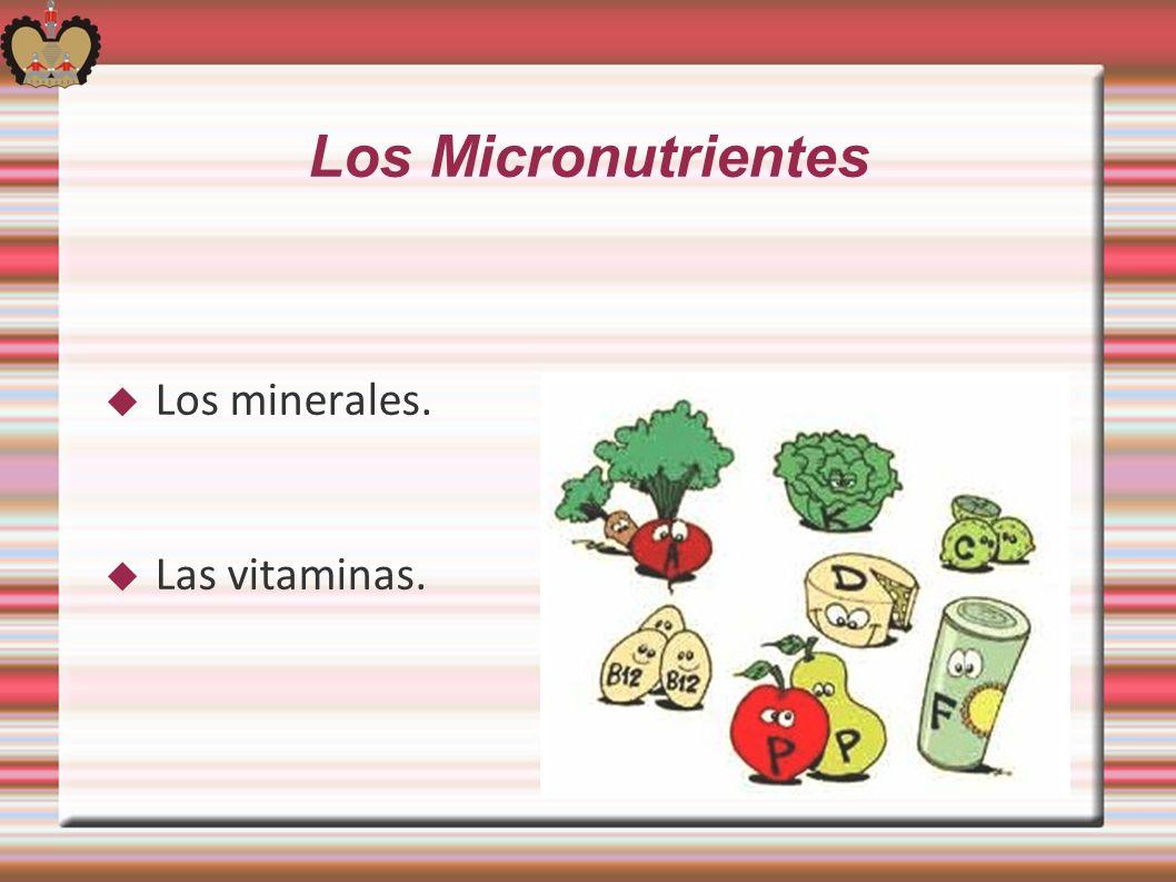 Los Micronutrientes Los minerales. Las vitaminas.