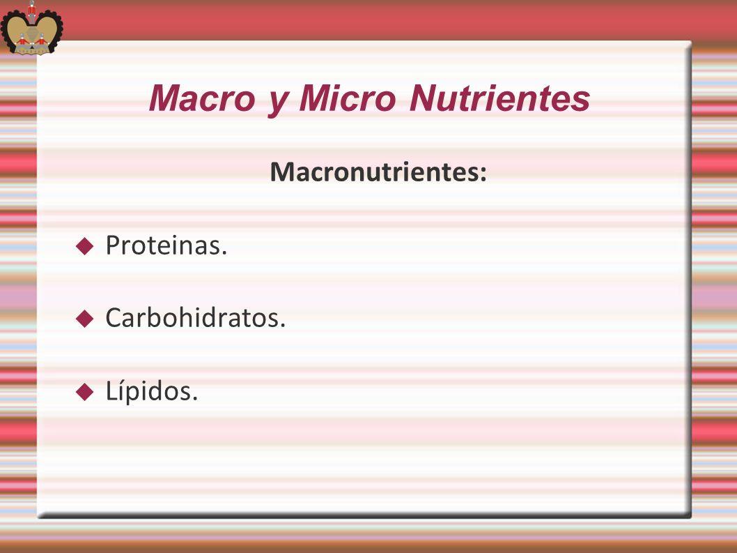 Macro y Micro Nutrientes