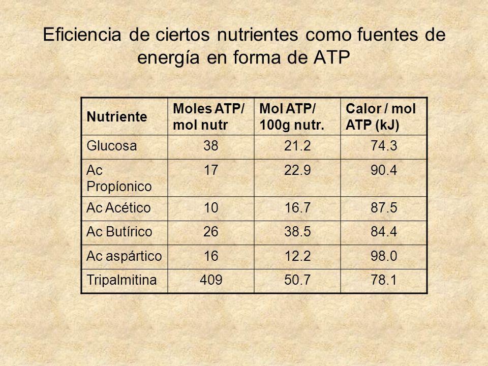 Eficiencia de ciertos nutrientes como fuentes de energía en forma de ATP