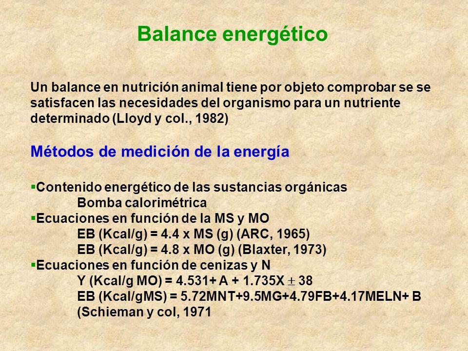 Balance energético Métodos de medición de la energía