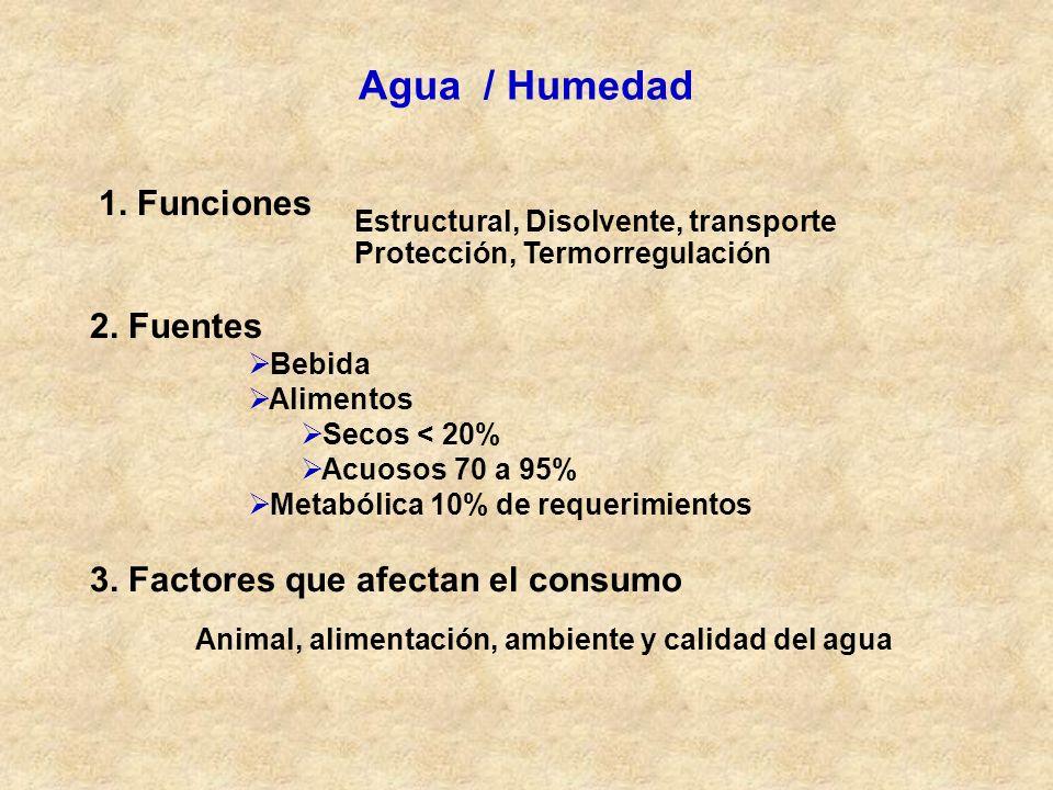Agua / Humedad 1. Funciones 2. Fuentes