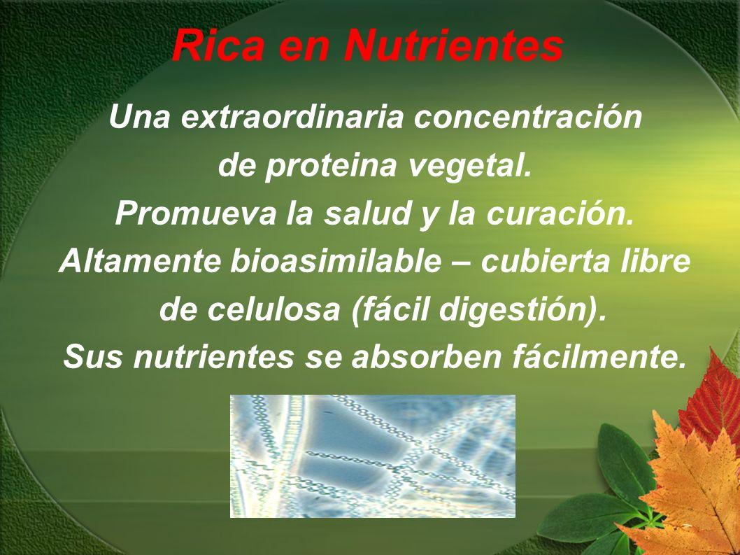 Rica en Nutrientes Una extraordinaria concentración