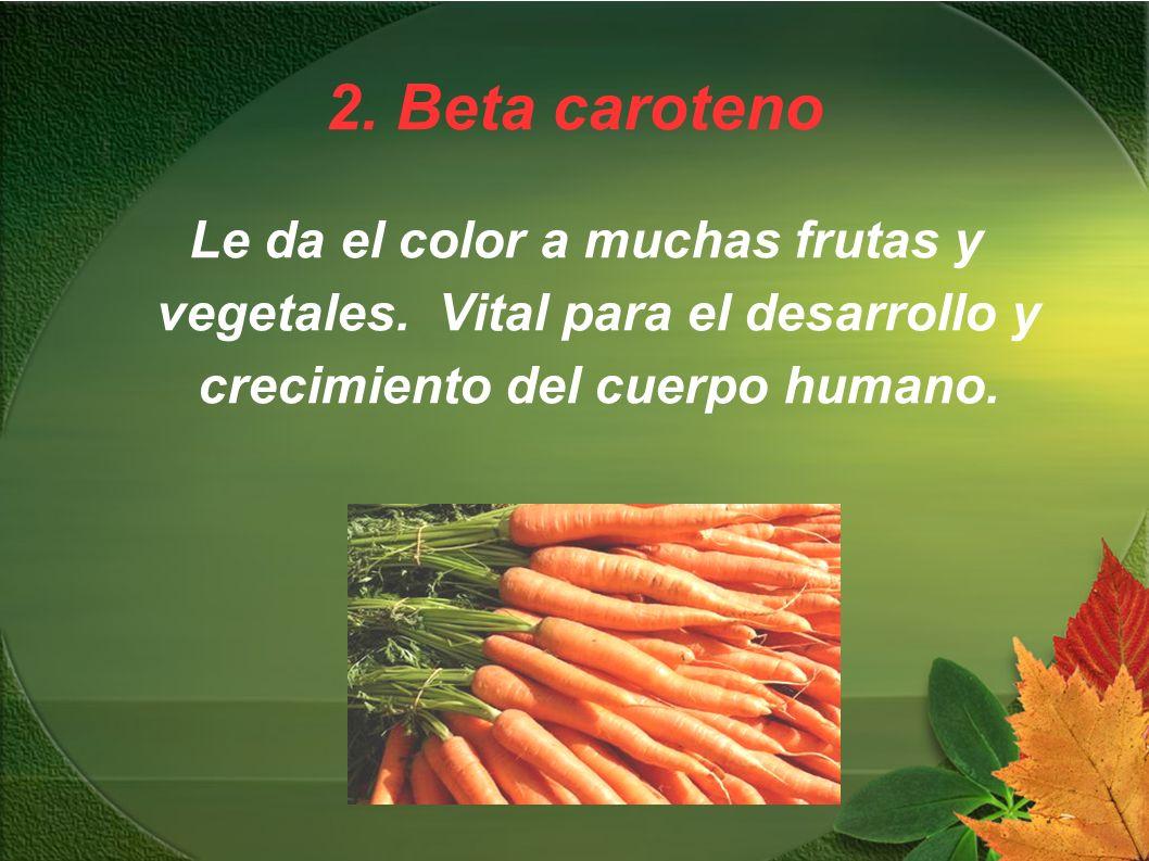 2. Beta caroteno Le da el color a muchas frutas y vegetales.