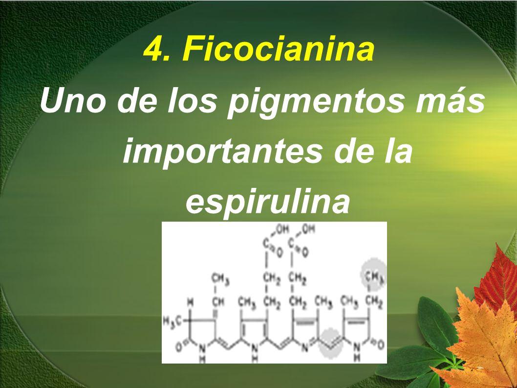 Uno de los pigmentos más importantes de la espirulina