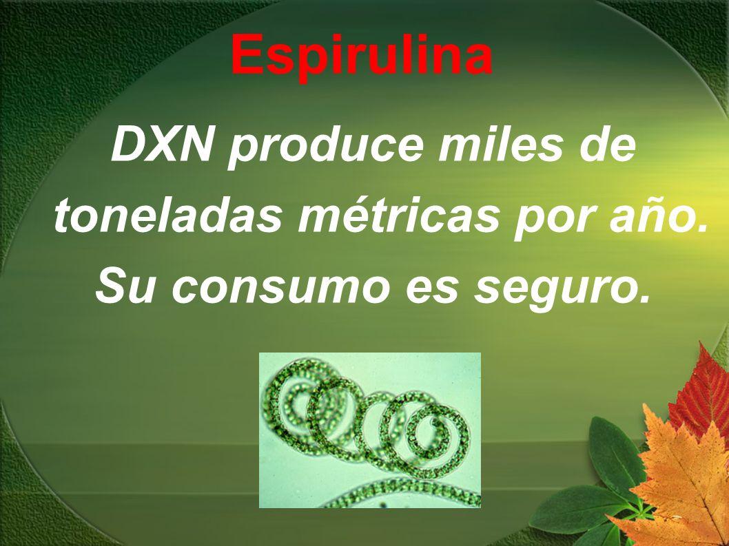DXN produce miles de toneladas métricas por año. Su consumo es seguro.