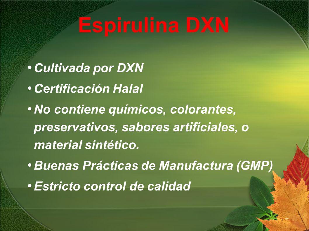 Espirulina DXN Cultivada por DXN Certificación Halal