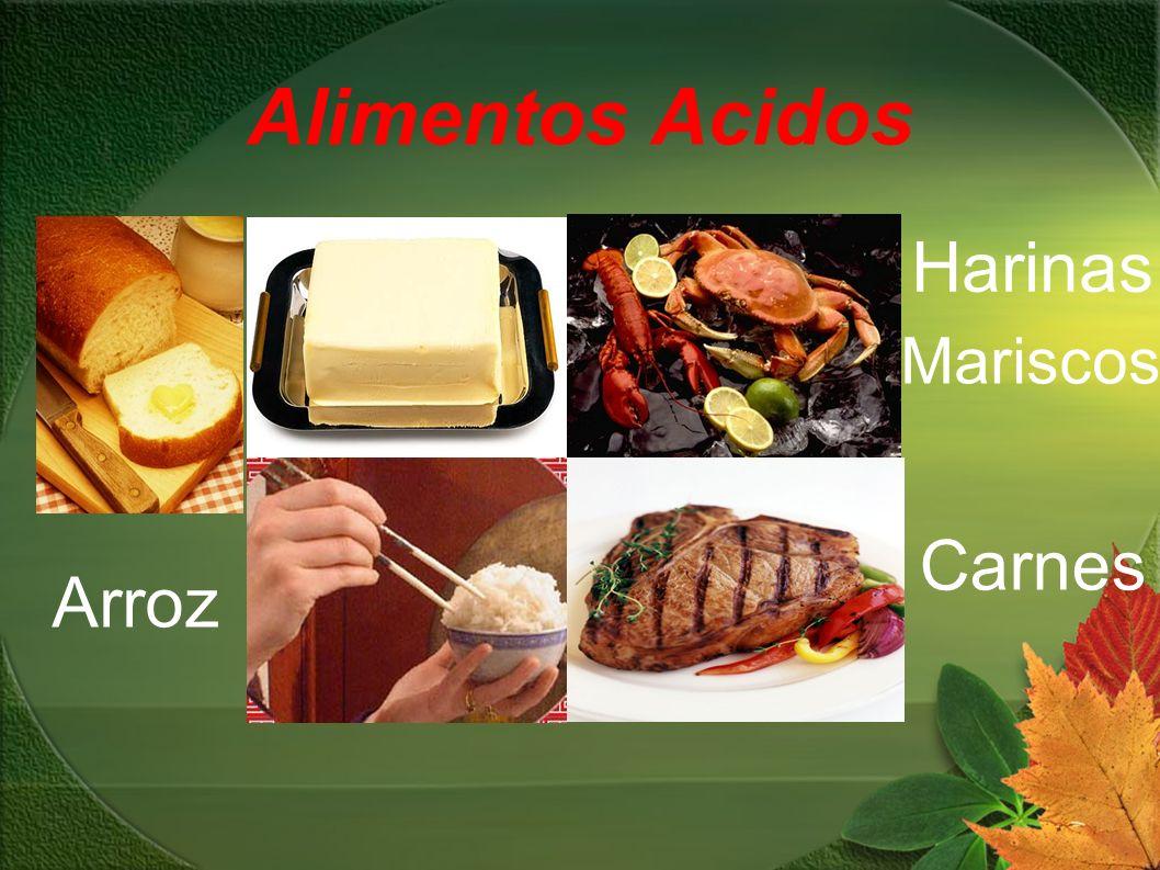 Alimentos Acidos Harinas Mariscos Carnes Arroz