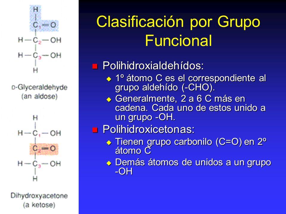 Clasificación por Grupo Funcional