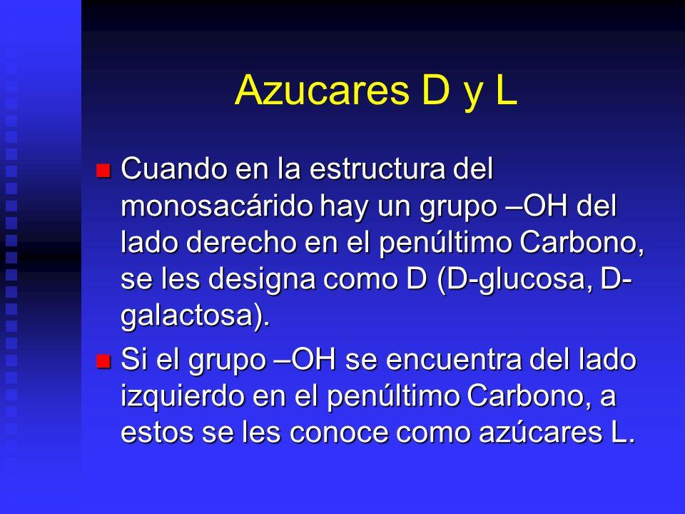 Azucares D y L