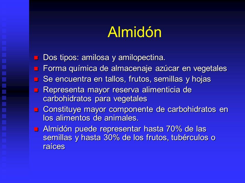 Almidón Dos tipos: amilosa y amilopectina.